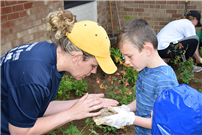 Miller Avenue students make a difference with a rain garden photo